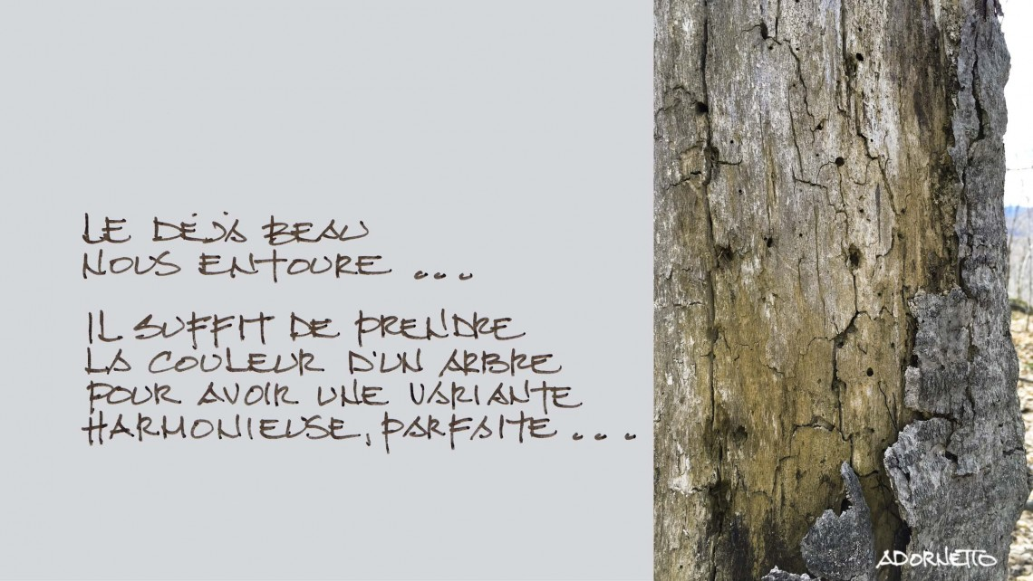 web projet 015 Le Refuge - 04 Texte